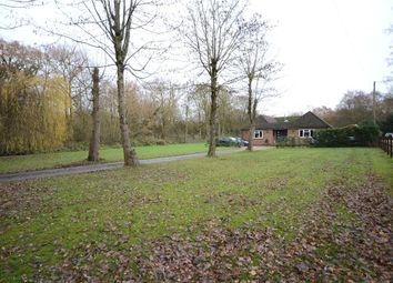 Thumbnail 4 bed detached bungalow for sale in Hollybush Lane, Aldershot, Hampshire
