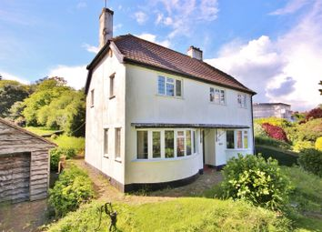 Thumbnail 3 bed detached house for sale in Pine Walk, Lyme Regis