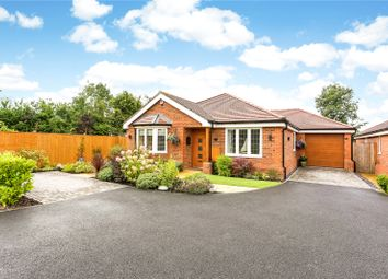 Thumbnail 3 bed detached bungalow for sale in The Old Creamery, Lovel Road, Winkfield, Windsor