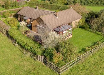 Thumbnail 4 bed bungalow for sale in Trostrey, Usk