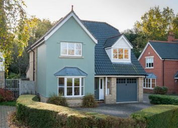 Thumbnail 4 bed detached house for sale in Stan Petersen Close, Thorpe Hamlet, Norwich