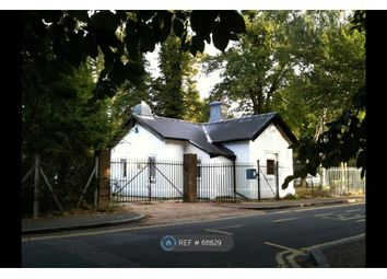 Thumbnail Room to rent in Wildcroft Road, Putney Heath