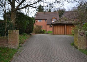 Thumbnail 5 bed detached house for sale in Flordon, Norwich