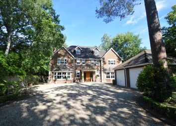 Thumbnail 6 bed detached house for sale in Hollybush Ride, Finchampstead