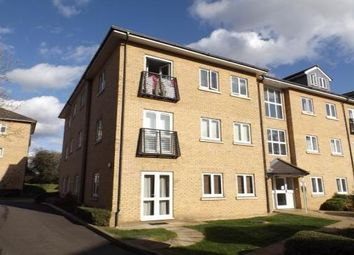 Thumbnail 3 bed flat to rent in Bloyes Mews, Colchester