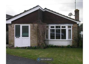 Thumbnail 3 bed bungalow to rent in Broadfield Road, Salisbury