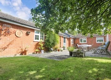 Thumbnail 4 bed detached bungalow for sale in Curdridge Lane, Curdridge, Southampton
