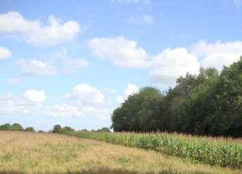 Thumbnail Land for sale in Kennelling Road, Charing, Ashford