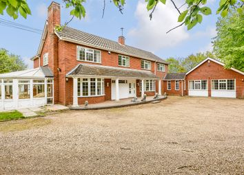 Thumbnail 11 bed detached house for sale in Attleborough Road, Great Ellingham, Attleborough