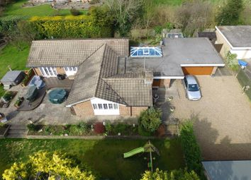 Thumbnail 4 bed detached bungalow for sale in Deans Lane, Walton On The Hill, Tadworth