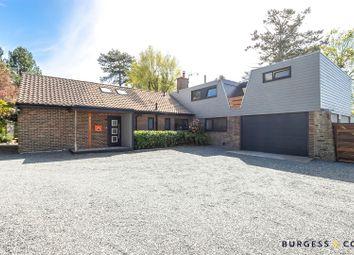 Birchington Close, Bexhill-On-Sea TN39, south east england property