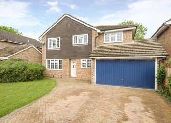 Thumbnail 4 Bed Detached House For Sale In Binfield Village, Berkshire