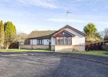 Thumbnail 4 bed detached bungalow for sale in Cadell Loan, Doune
