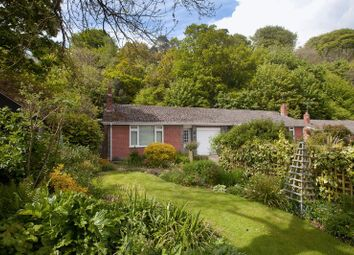 Thumbnail 2 bed bungalow for sale in Tanyard Lane, Shaftesbury