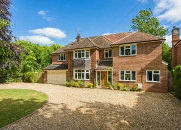 Thumbnail 6 bed detached house for sale in Long Walk, Chalfont St. Giles