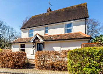 Thumbnail 4 bed semi-detached house for sale in Maltbys, Selborne, Alton, Hampshire