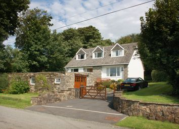 Thumbnail 4 bedroom detached house for sale in New Moat, Clarbeston Road