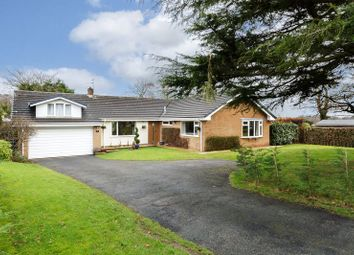 Thumbnail 6 bed detached bungalow for sale in The Stiles, Delamere Park, Delamere, Northwich