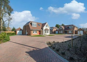 Thumbnail 4 bed detached house to rent in Westfield Parade, Byfleet Road, New Haw, Addlestone