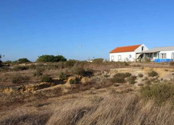 Thumbnail Land for sale in 7580 Alcácer Do Sal, Portugal