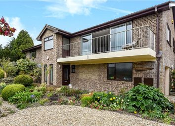 Thumbnail 4 bed detached house for sale in St. Marys Close, Winterborne Whitechurch, Blandford Forum
