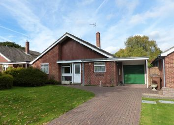 Thumbnail 3 bedroom detached bungalow to rent in Harrier Close, Cranleigh