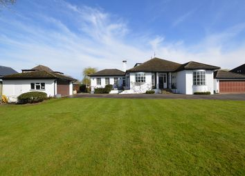 Thumbnail 4 bed detached house for sale in Hamm Court, Weybridge Surrey