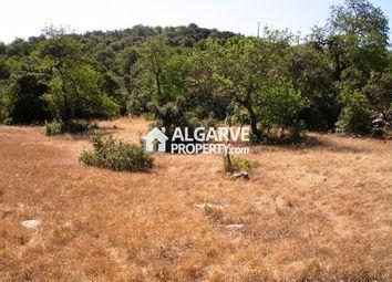 Thumbnail Land for sale in Parragil, Almancil, Loulé Algarve