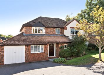 Thumbnail 4 bed detached house for sale in Orchard Close, Alresford, Hampshire