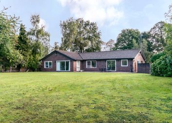Thumbnail 4 bed detached bungalow for sale in Brook Gardens, Coombe, Kingston Upon Thames