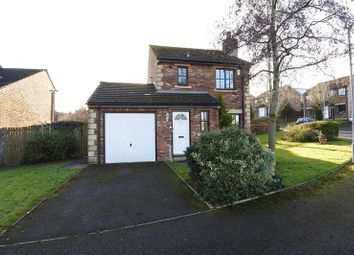 Thumbnail 3 bed detached house for sale in Townfoot Park, Brampton