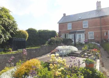 Thumbnail 2 bed terraced house to rent in Belle Vue, Holsworthy