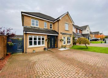 Thumbnail 4 bed detached house for sale in Harlequin Court, Hamilton
