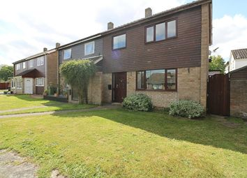 Thumbnail 4 bedroom semi-detached house for sale in Beech Way, Dickleburgh, Diss
