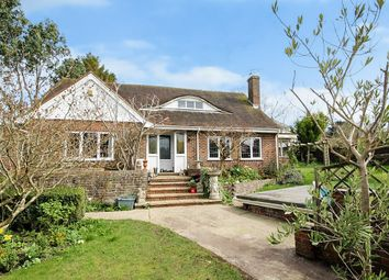 Thumbnail 4 bed detached bungalow for sale in Nepcote Lane, Findon, Worthing