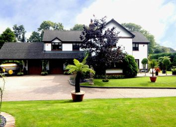 Thumbnail 4 bed detached house for sale in Domicilia, Cosheston, Pembrokeshire