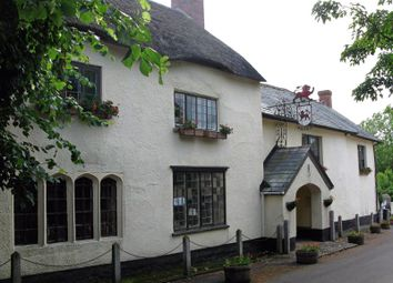Thumbnail Pub/bar for sale in Broadhembury, Honiton