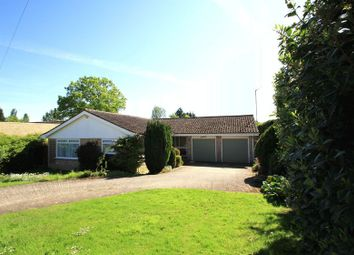 Thumbnail 4 bed detached bungalow to rent in Mapledrakes Road, Ewhurst, Cranleigh