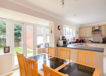 Thumbnail 6 bed property to rent in Mitchell Way, York