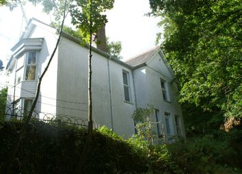Thumbnail 4 bed detached house for sale in Cenarth, Ceredigion