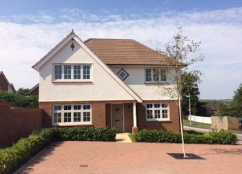 Thumbnail 4 bed detached house to rent in Coleberd Close, Ottery St. Mary