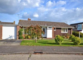 Thumbnail 2 bed detached bungalow to rent in Gilpin Close, Fishbourne
