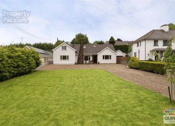 Thumbnail 5 bed detached bungalow for sale in Belfast Road, Ballynahinch, Down