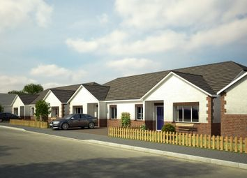 Thumbnail 3 bed semi-detached bungalow for sale in Norton Road, Penygroes, Llanelli