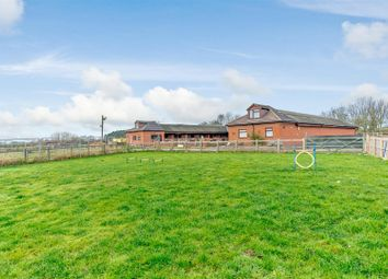 Thumbnail 4 bed equestrian property for sale in Austrey Lane, No Mans Heath, Tamworth