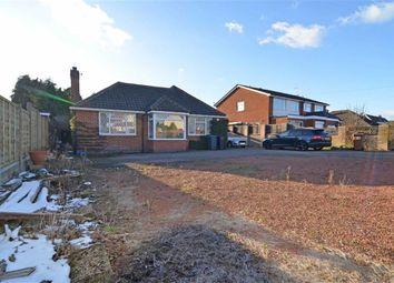 Thumbnail 3 bed detached bungalow for sale in Stoke Road, Hinckley, Leicestershire