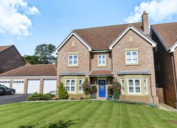 Thumbnail 6 bedroom detached house for sale in Collingham Drive, Nunthorpe, Middlesbrough