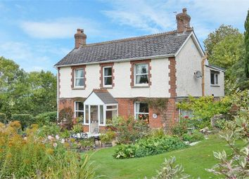 Thumbnail 4 bed detached house for sale in Dalwood, Axminster, Devon