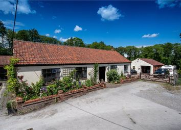 Thumbnail 4 bedroom bungalow for sale in Crofters Barn, Crofters Barn, Knowts Hall Farm