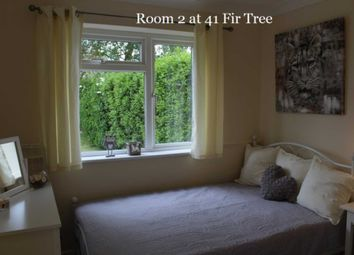 Thumbnail Room to rent in Room 2, 41 Fir Tree Road, Guildford